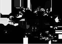 Logo Diogene1919